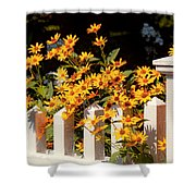 Flower - Coreopsis - The Warmth Of Summer Shower Curtain by Mike Savad