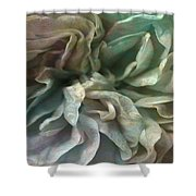 Flower Dance - Abstract Art Shower Curtain