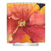 Flower Face Shower Curtain