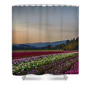 Flower Fields 2 Cropped Into A Standard Ratio Shower Curtain