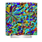 Flower Fight Abstract Shower Curtain