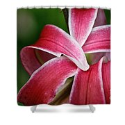 Flower Fist Shower Curtain