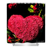 Flower For The Heart Shower Curtain