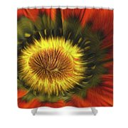 Flower Fractal Shower Curtain