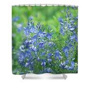 Flower Frenzy Shower Curtain
