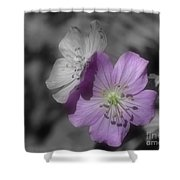 Flower Friends In Black And White Shower Curtain