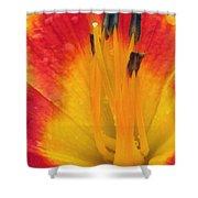 Flower Garden 03 Shower Curtain