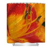 Flower Garden 10 Shower Curtain