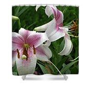 Flower Garden 20 Shower Curtain