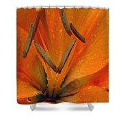Flower Garden 24 Shower Curtain