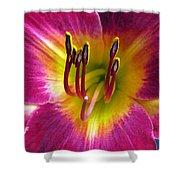 Flower Garden 30 Shower Curtain