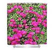 Flower Garden 38 Shower Curtain