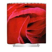 Flower Garden 41 Shower Curtain