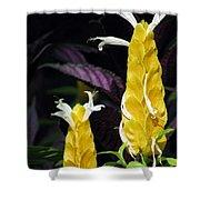 Flower Garden 51 Shower Curtain