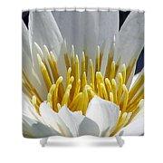 Flower Garden 55 Shower Curtain