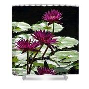 Flower Garden 59 Shower Curtain