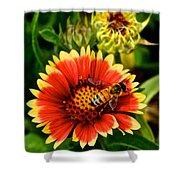 Flower Garden Shower Curtain