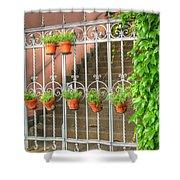 Flower Gates Shower Curtain
