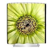 Flower Green Shower Curtain