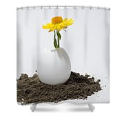 Flower Growing In A Egg Shower Curtain