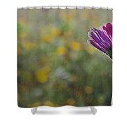 Flower In A Field  Shower Curtain