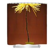 Flower In A Vase Shower Curtain