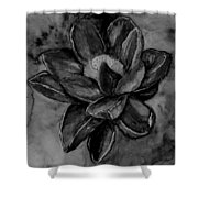Flower In Black And White Shower Curtain