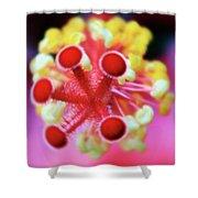 Flower In Pink Shower Curtain