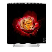 Flower In Red And Gold Shower Curtain