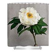 Flower In Vase Shower Curtain
