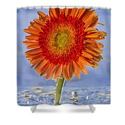 Flower In Water Shower Curtain