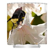 Flower King Shower Curtain
