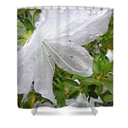 Flower Laced With Rain Drops Shower Curtain