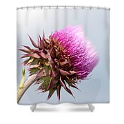 Flower Massage Shower Curtain