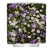 Flower Mix - Purple And White Shower Curtain
