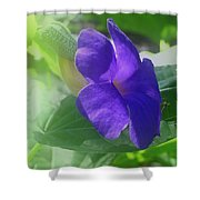 Flower No. 2 Shower Curtain