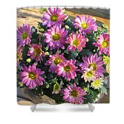 Flower Of Fall Shower Curtain