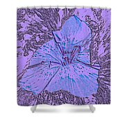 Flower Of Purple Shower Curtain