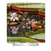 Flower Of Victoria Cruziana Shower Curtain
