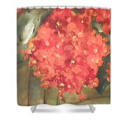 Flower On The Wall Shower Curtain