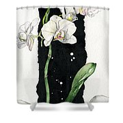 Flower Orchid 05 Elena Yakubovich Shower Curtain by Elena Yakubovich