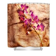 Flower - Orchid - Just Splendid Shower Curtain