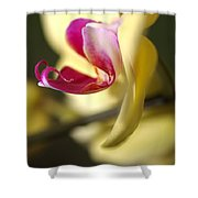 Flower-orchid-yellow Shower Curtain