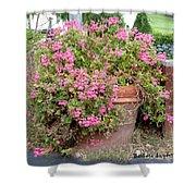 Flower Pot 2 Shower Curtain