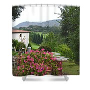 Flower Pot 3 Shower Curtain