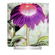 Flower Power 1357 Shower Curtain