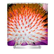 Flower Power 1358 Shower Curtain