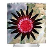 Flower Power 1429 Shower Curtain