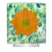 Flower Power 1433 Shower Curtain