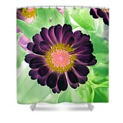 Flower Power 1435 Shower Curtain